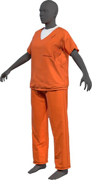 prison-trans-small.png